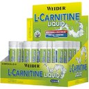 L-Carnitine liquid 20 Fialen